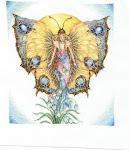 Jelenlegi xszemes munkám: Lanarte pillangója - 2007. július végén kezdtem