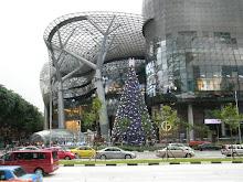 ion christmas
