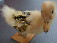 steampunk taxidermy, fixed - duckling