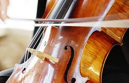 Literatura del violonchelo