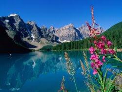 Fotos do meio ambiente