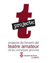 Projecte T