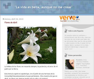 La Vida es Bella blog
