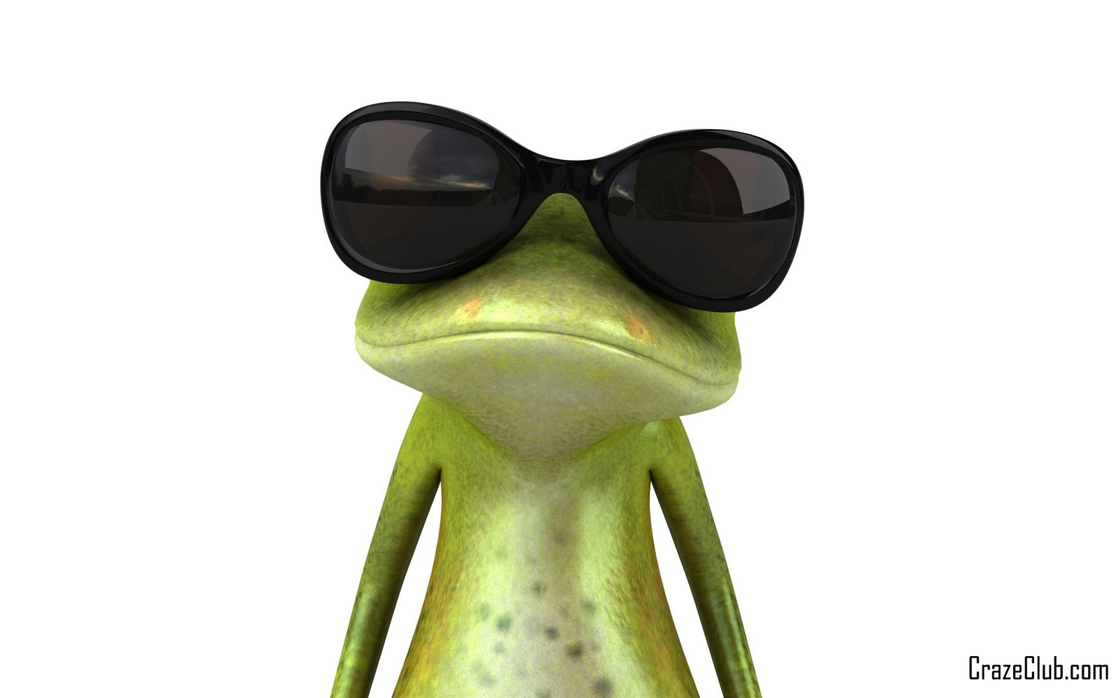 Crazy frog in different actions for Immagini divertenti desktop
