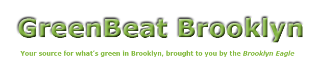 GreenBeat Brooklyn