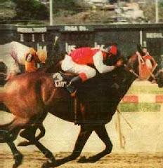 Lady And Me: Campeona Tresañera y Triplecoronada en 1991.