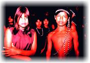 El arte sonoro Mbya, esa música soñada