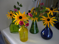 Black Eyed Susans 001