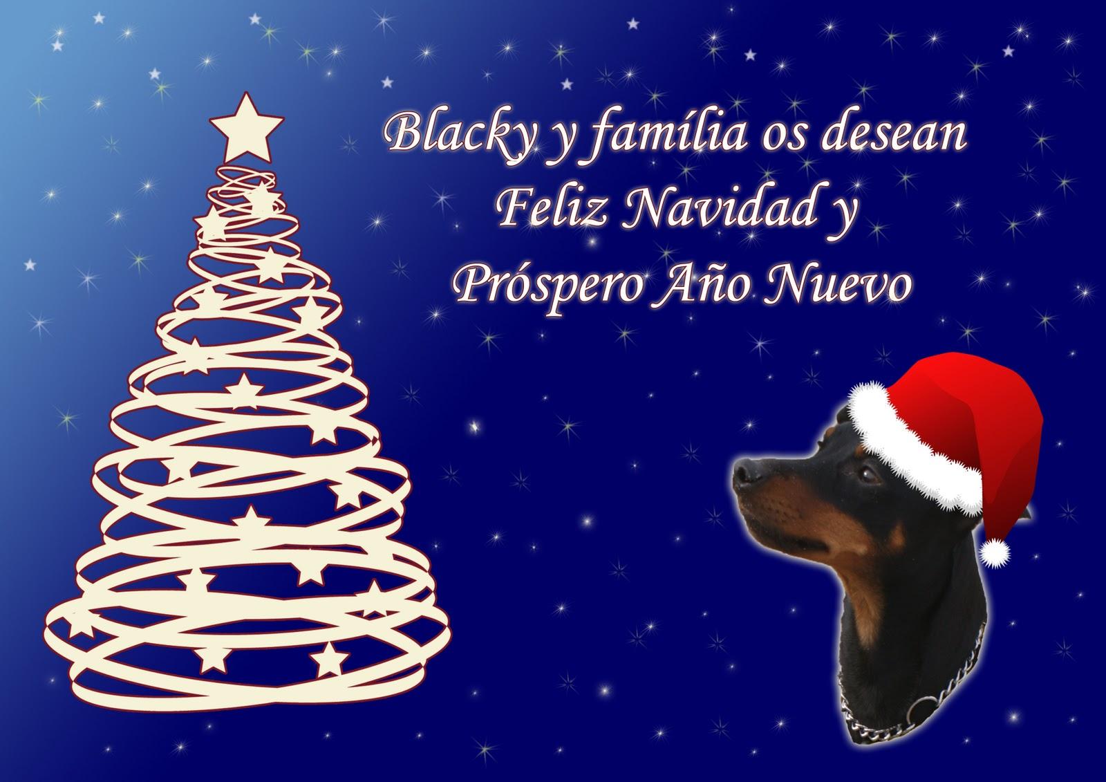 La c mara de loli felicitaciones de navidad - Tarjetas felicitacion navidad ...