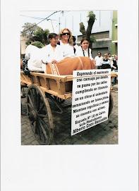Fiesta de las llanuras edicion 2008