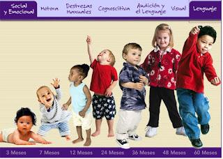 Indicadores de Desarrollo Infantil