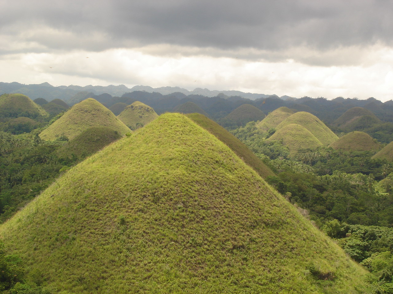the chocolate hills placed bohol on the tourist map long before the