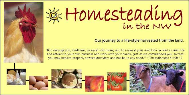 Homesteading in the NW