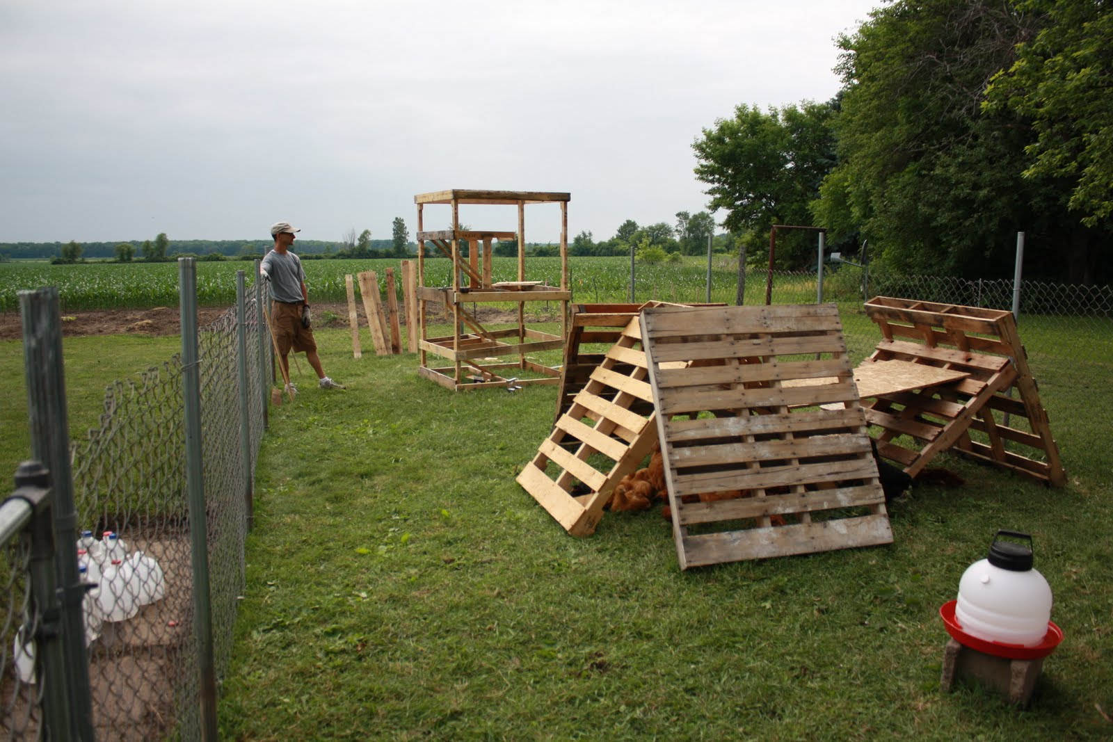 Michigan roys homemade chicken coop for Homemade chicken house