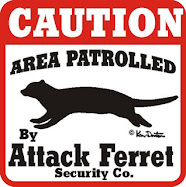 attack ferret