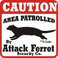 attack ferret