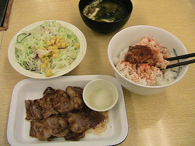 Travel News and Deals   September 1, 2009   Eat Cheap in Japan, Getting Your Laptop Jacked By Customs, The Advantage of a Second Language, Eco Hostels