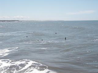 Surf - Miramar - Argentina