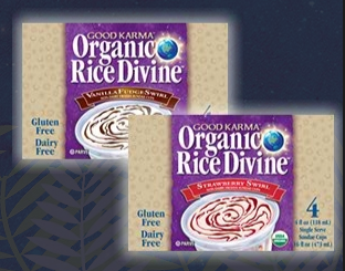 good karma organic rice divine ice cream cups