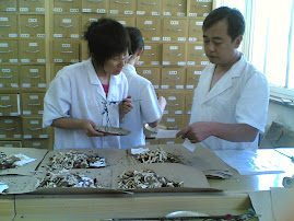 Viagem à China - The Huguost Hospital of Chinese Medicine