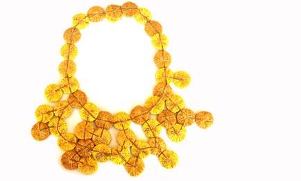 collar vacide dorado