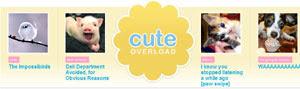 CuteOverload