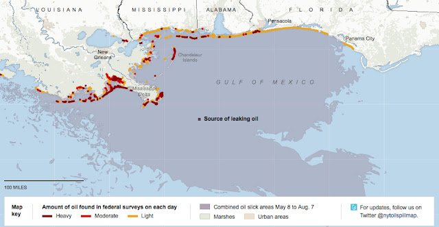 bp gulf oil spill case study 1 case study: the gulf coast and the bp oil spill about the gulf coast the gulf of mexico is bordered by five of the united states: florida, alabama, mississippi.