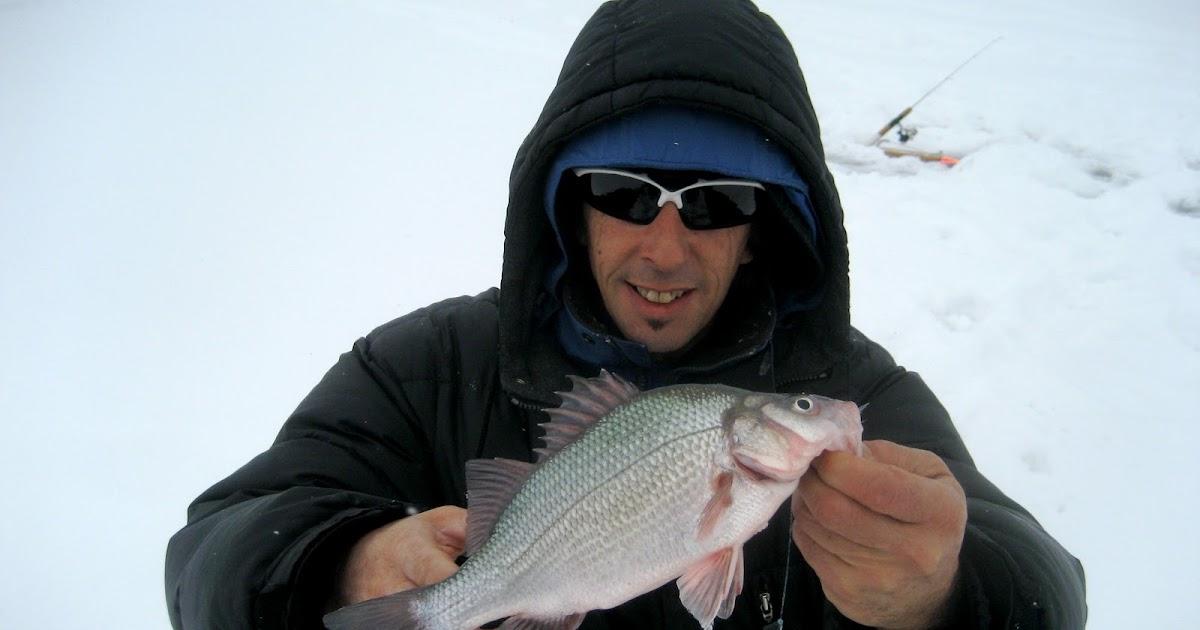 La pêche en hiver dans le domaine de Volgograd de vidéo