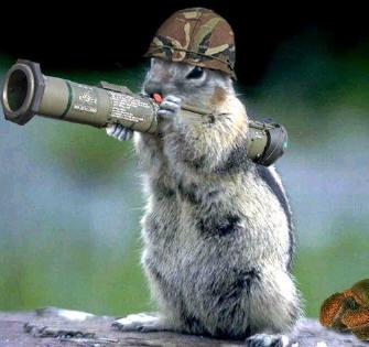 Christian Free Speech Army_squirrel