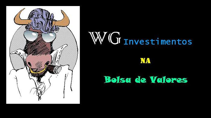 wg investimentos na bolsa