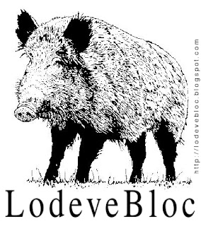Logo LodeveBloc à effigie de sanglier