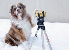 Go to        wetstinkydog.com