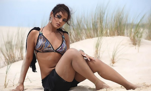 Neetu Chandra Spicy Pics Photoshoot images
