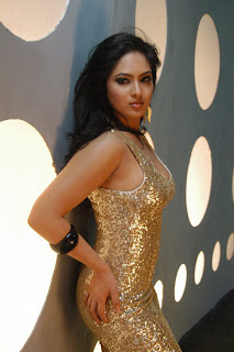 Komaram Puli Nikesha Patel Hot Stills