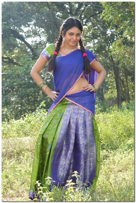 meenakshi girl ing her on half saree latest photos
