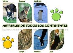Animales de todos los continentes