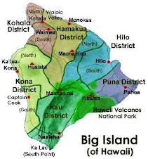 MAP - BIG ISLAND