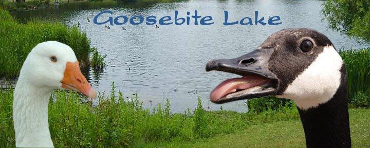 Goosebite Lake