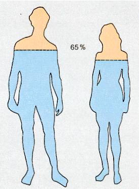 Importancia del consumo del agua