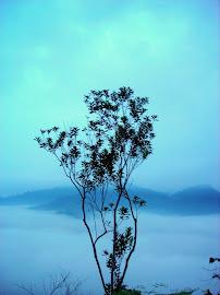 Lembing 林明