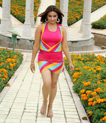 pooja gandhi, poooja gandhi swimsuit pics, actress pooja gandhi hot gallery, actress poojagandhi navel   pics