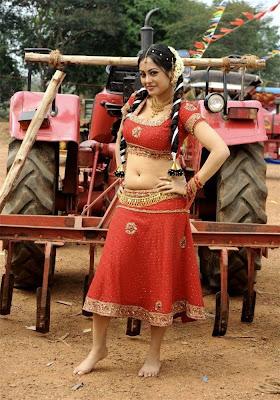 Meenakshi, meenakshi actress, Meenakshi actress navel, Meenakshi boobs, Meenakshi wet gallery, meenakshi sexy pics,