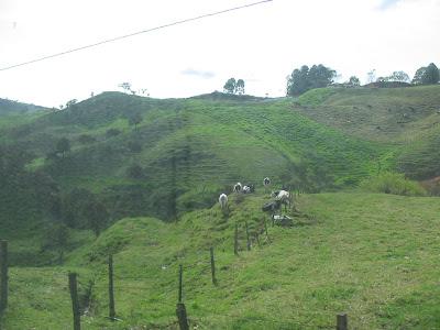 Caucasia Colombia