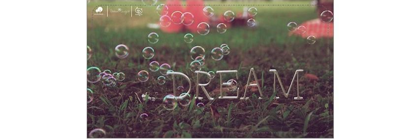 ' Dream On