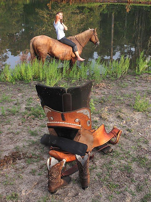 [horse+for+blog.jpg]