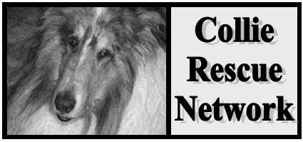 Collie Rescue Network