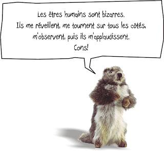 Marmite-la-marmotte-3