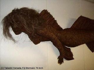Real Fiji Mermaid