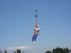 Flying Fox Tandem