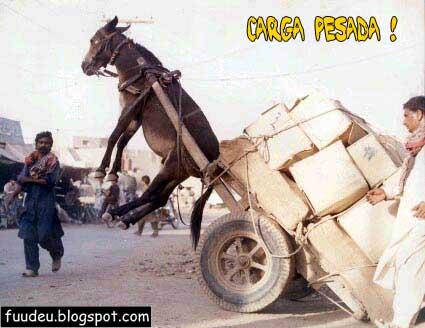 Carga de burro